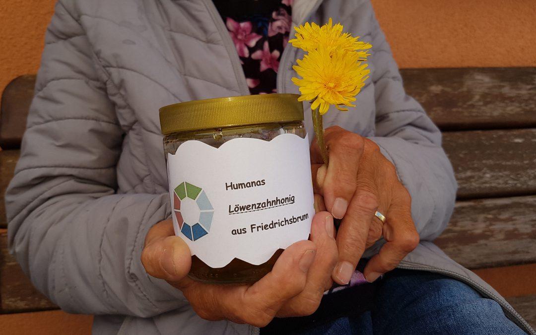 Fleißige Bienchen in Friedrichsbrunn